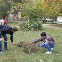 Запорізькі громади долучилися до Всеукраїнської толоки